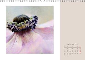 Blütenträume (Wandkalender 2016 DIN A3 quer)