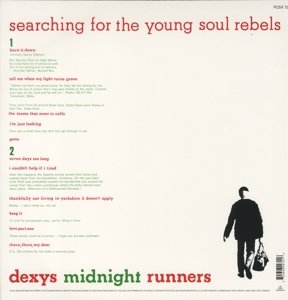 Searching For The Young Soul Rebels