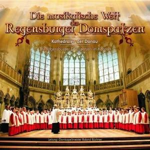Die Musikalische Welt Der Regensburger Domspatzen