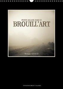 Nicolas, R: Petite Balade Dans Le Brouill'art