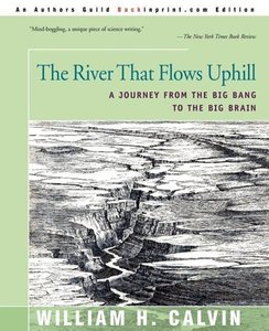 The River That Flows Uphill: A Journey from the Big Bang to the