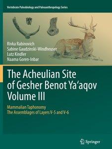 The Acheulian Site of Gesher Benot Ya'aqov Volume III