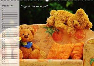 Sommer im Teddy-Land. Bär und Freunde