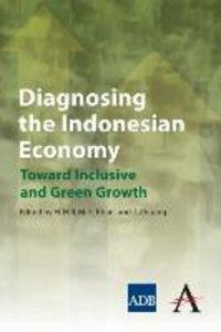 Diagnosing the Indonesian Economy