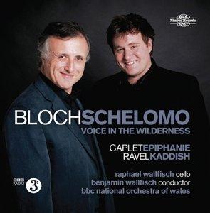 Schelomo/Voice In The Wilderness