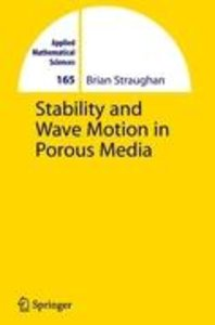 Stability and Wave Motion in Porous Media