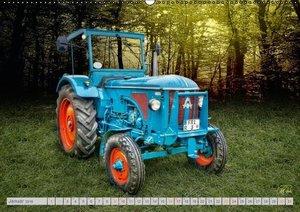 Oldtimer Schätze. Ein Traktoren-Kalender (Wandkalender 2016 DIN