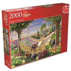 Entspannte Welpen. Puzzle 2000 Teile