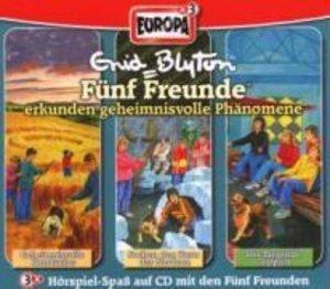 Fünf Freunde Box 08