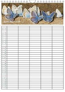 Seltene Tagfalter: Bläulinge / Familienplaner