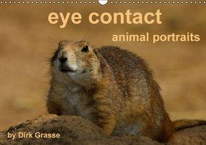 eye contact - animal portraits / UK-Version (Wall Calendar 2015