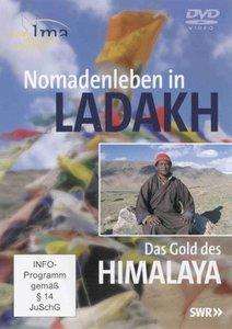 Nomadenleben in Ladakh