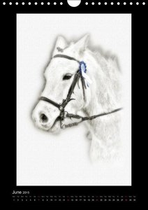 Equestrian art (Wall Calendar 2015 DIN A4 Portrait)