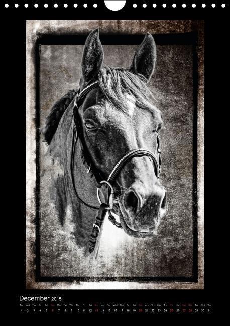 Equestrian art (Wall Calendar 2015 DIN A4 Portrait) - zum Schließen ins Bild klicken