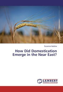 How Did Domestication Emerge in the Near East?