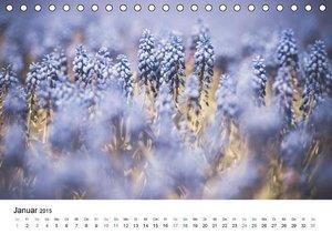 Dobrindt, J: Frühlingsfreuden - Ein ganzes Jahr (Tischkalend