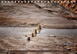 Friesland - Watt und Nordsee (Tischkalender 2016 DIN A5 quer)