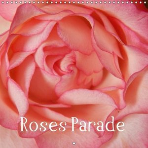 Roses Parade (Wall Calendar 2015 300 × 300 mm Square)