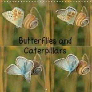 Butterflies and Caterpillars (Wall Calendar 2015 300 × 300 mm Sq