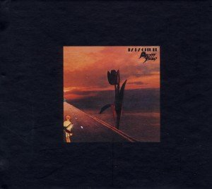 Parachute (Deluxe)