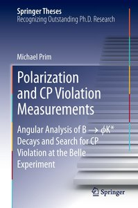 Polarization and CP Violation Measurements