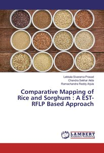 Comparative Mapping of Rice and Sorghum : A EST-RFLP Based Appro