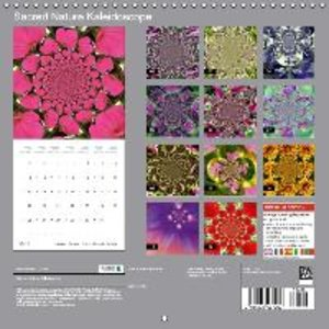 Sacred Nature Kaleidoscope (Wall Calendar 2015 300 × 300 mm Squa
