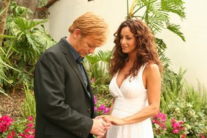 CSI: Miami-Season 7