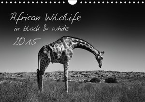 African Wildlife in Black and White / UK-Version (Wall Calendar
