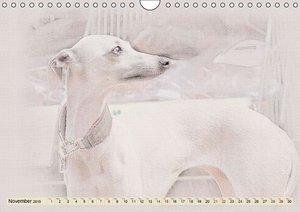 Italian Greyhounds 2015 (Wall Calendar 2015 DIN A4 Landscape)