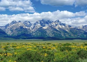Wildes Wyoming (Posterbuch DIN A4 quer)