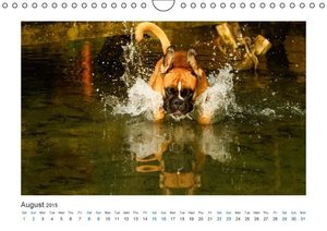 German Boxer / UK-Version (Wall Calendar 2015 DIN A4 Landscape)