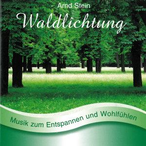 WALDLICHTUNG-Sanfte Musik z.Entspanne