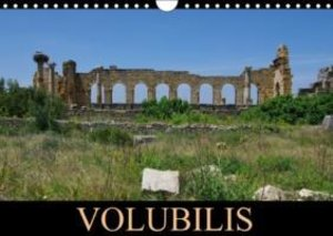 Volubilis (Calendrier mural 2015 DIN A4 horizontal)