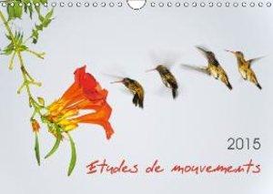 Etudes de mouvements (Calendrier mural 2015 DIN A4 horizontal)
