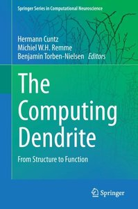 The Computing Dendrite