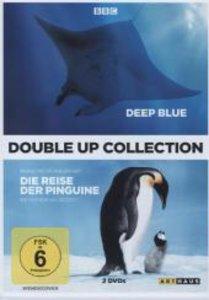 Deep Blue & Die Reise der Pinguine