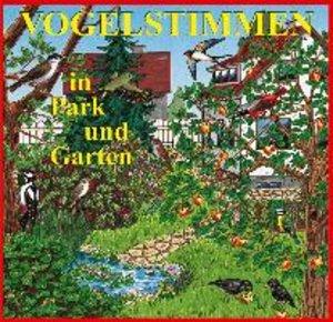 Vogelstimmen In Park Und Garten