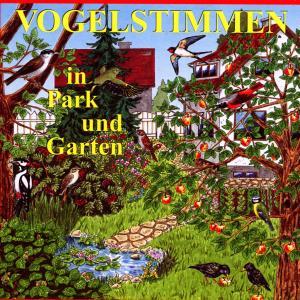 Vogelstimmen In Park Und Garten - zum Schließen ins Bild klicken