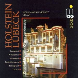 Orgellandschaft Holstein