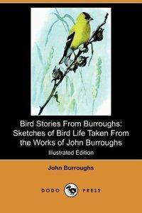 Bird Stories from Burroughs