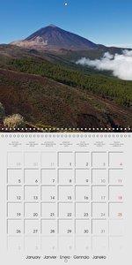 Tenerife Teide National Park (Wall Calendar 2015 300 × 300 mm Sq