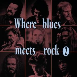 Where Blues Meets Rock Vol.2