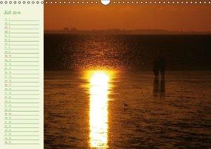 Natur - Impressionen Terminkalender von Tanja Riedel Schweizer K