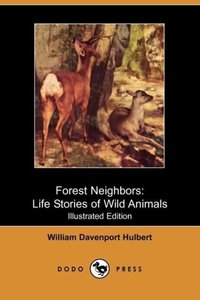 Forest Neighbors
