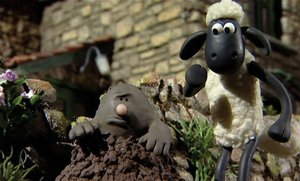 Shaun das Schaf-Bitte lächeln! (DVD)