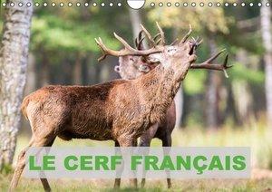 Le Cerf Français (Calendrier mural 2015 DIN A4 horizontal)