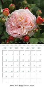 Stunning Flower Portraits (Wall Calendar 2016 300 × 300 mm Squar
