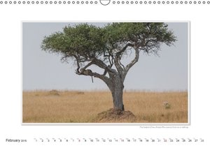 Emotional Moments: The Umbrella Acacia Tree. UK-Version (Wall Ca
