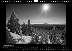 Levi, A: Harz-Photos in Monochrome/UK-Version